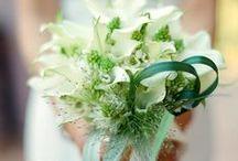 Bouquet Wedding inspiration