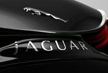 Oprawy marki Jaguar / W Jaguarze każdy znajdzie coś dla siebie. Ktoś kto lubi być zauważony jak i ten kto woli wtopić się w tłum. A Ty jaki styl wybierasz? Zapraszamy! Więcej: http://www.optyk-promed.pl/index.php?option=com_content&view=article&id=33&Itemid=33