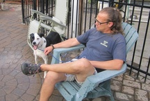 Jeff Gellman Logic & Quotes / I am the dog trainer that understands and recognizes the importance of developing a unique real world dog training program that brings out each dog's full potential so they can exist in harmony with their owners each and every day.