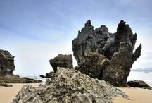 Naturaleza en Isla y alrededores, Cantabria, Spain