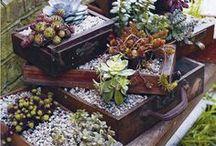 gardening,garden, outdoor living