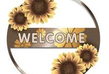 Welcome / by Amy Jones