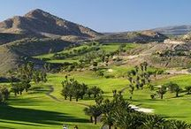 Golf / There are many golf courses on the Canary Islands. One of our favorites is Salobre Golf on Gran Canaria, surrounded by beautiful modern villas. Enjoy the view to the mountains, the green grass and the palm trees while you practice your swing!