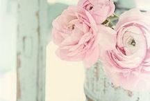 Utuisia unelmia - rooms, feelings, rosa, turqoise... / Värikarttoja kodin sisustukseen, makuuhuoneita, turkoosia, rosaa, romanttisia fiiliksiä, uutta, vanhaa ja muualta lainattua.
