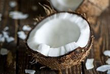 Cocos (Coconut) / Botanical Taxonomy