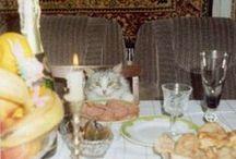 cat. / by rowan wright