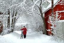 Winter - oh so beautiful
