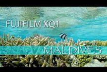 Sample Movies / by Fujifilm X World