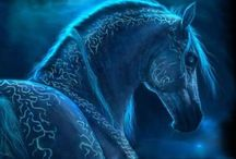Horses / Nejlepší pohled na svět je z koňského hřbetu ♥