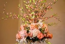 Receptions and Centerpieces