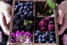 food photography / Alles rund um Foodfotos, vor allem mit einzelnen Komponenten.