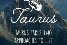 TAURUS (STIER)