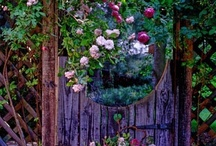 HOME**Garden / by Charlene Murray