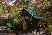 Bumble Bee Hide-A-Way (all things bees & cabins) / https://www.facebook.com/BumbleBeeHideAway    Located in the Nantahala National Forest, this cozy abode is 13 miles from downtown Murphy, NC. This cabin offers the best in quiet, comfortable living. From the plush bedding to the hot tub on the large coverd deck, you may not want to ever leave.