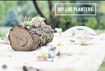 Wood Projects DIY / Using natures tiny works of art to create interesting and unique woodland-inspired projects!  https://www.etsy.com/shop/PineBranchDesigns?section_id=7636256&ref=shopsection_leftnav_7