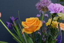 Flowers / Bloemen / I love flowers!  Ik hou van bloemen in huis, de gerbera is mijn favoriet.