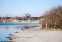 My place: Kennemer Dunes