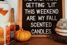 Autumn / pumpkin season