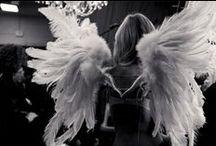 VS angels