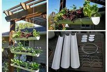 Green Thumb- outdoor and garden ideas :)