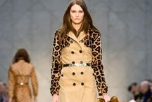 Animal Instinct / Leopard print stalked the AW13 catwalks in a big way.  Make your wardrobe roar whatever your budget!