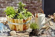 Au Naturel / Get back to basics with these natural yet stylish gardening accessories.