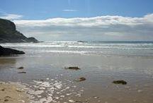 Cornish dreams