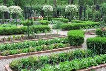 All about Kitchen Garden