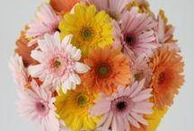 ブーケ ミックスカラー bouquet mix-color / ys floral deco