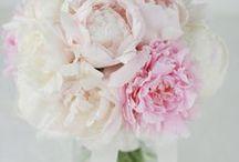 芍薬 piony / ys floral deco
