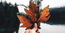 #Herbstgefühle / Wir ♡ den Herbst: Bunte Blätter, lange Spaziergänge, warmen Kakao und kuschlige Pullover. Folge uns bei einer gemeinsamen Reise durch den Herbst und verpasse keinen Trend. Per Klick auf das Bild kannst du direkt losshoppen. Enjoy it!