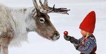 #GeschenkeFürKids / Weihnachten steht vor der Tür und was gibt es Schöneres, als strahlende Kinderaugen unterm Weihnachtsbaum?  Lasst euch inspirieren und shopt direkt los, ganz einfach per Klick aufs Bild! MERRY CHRISTMAS! ♡