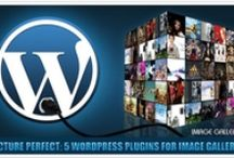 PSD to WordPress Conversion / Get hand coded, w3c valid PSD to WordPress conversion services at an affordable price. Best PSD to WordPress Conversion @ psdtowordpressexpert.com / by PSDtoWordPressExpert .
