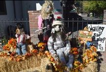 Halloween in Big Bear Lake / The Village has trick-or-treating every year for safe fun for your little ones. Come to Big Bear Lake in October.