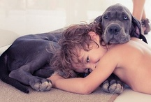 Kids and Animals / Beautiful photos of kids and animals.