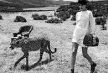 "Louis Vuitton'la ""Seyahat Ruhu"""