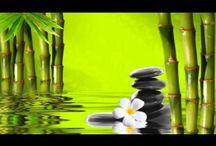 WELLNESS: Meditation / by christine sacramone