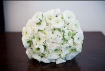 Fiona Curry Flowers / Wedding and Event Flowers