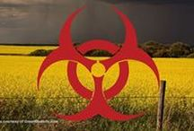 No to GMO and Monsanto / There are alternatives  / by Bunkumless