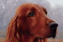 Chicky Dee's Gifts Irish Setter Items / Who doesn't Love Irish Setters!  Chicky Dee's Gifts Irish Setter Items.