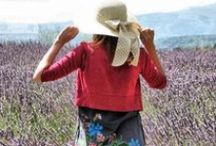 Hai cu mine in Provence! / 2 ani in Provence