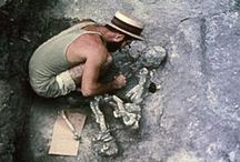 Archaeology in Film / Ever wonder how archaeologists excavate, preserve, protect, and interpret a site? Check out these films to find out. Some even have corresponding lesson plans.