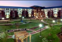 Our Residence Halls