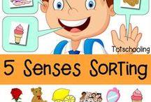 5 senses/ Αισθήσεις / 5 senses related edu material