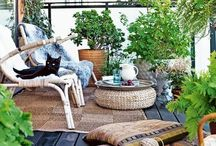 | OUTDOOR / Outdoor furniture, styling, plants.