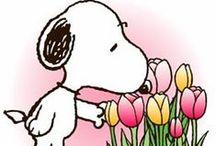 Pin!FlowerEffect