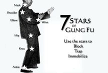 Wing chun / A Chinese martial arts  / by Isaac Bennett