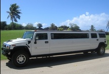 Charter a Turtle Tours Bus or Limousine - Turtle Tours Guam / Great for sightseeing on Guam or your personal charter.