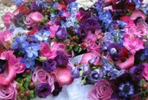 Jewel Tones in Flowers / Deep jewel tones in flowers for a wedding