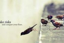 birdie / I. love. birdies.